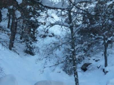 Ladera Mojonavalle-Bosques Canencia; vacaciones en noviembre viajes septiembre rutas la pedriza